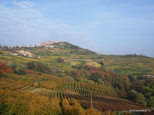 The Langhe region of Piedmont, famous for Barolo wines